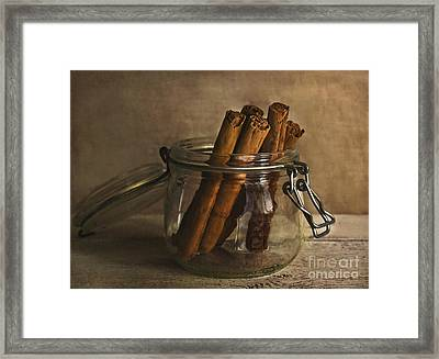 Cinnamon Sticks In A Glass Jar Framed Print by Elena Nosyreva