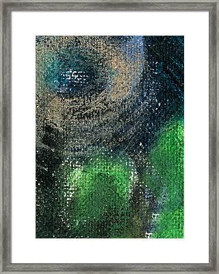 Circnspin Framed Print by Jorge Delara