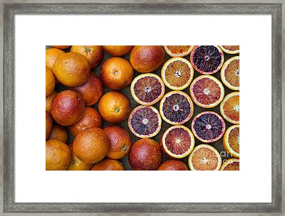 Citrus Blood Oranges Framed Print by Tim Gainey