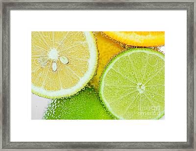 Citrus Fresh By Kaye Menner Framed Print by Kaye Menner