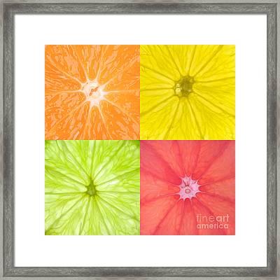 Citrus Fruits Framed Print by Richard Thomas