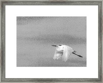 Clear For Take Off Framed Print by Marvin Spates