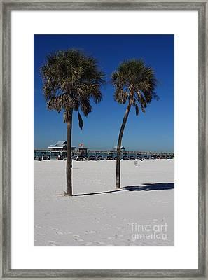 Clearwater Beach Framed Print by Carol Groenen