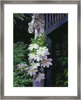 Clematis Blossoms Framed Print by David Lloyd Glover