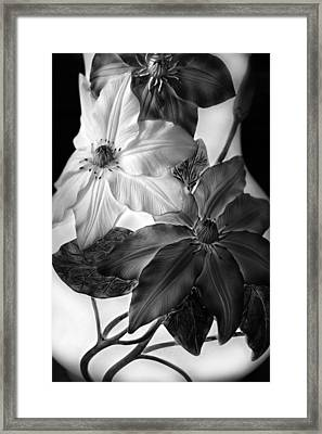Clematis Overlay Framed Print by Jessica Jenney