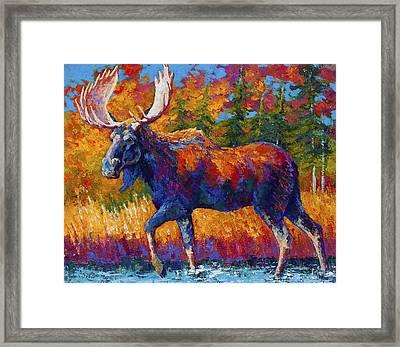 Close Range Framed Print by Marion Rose