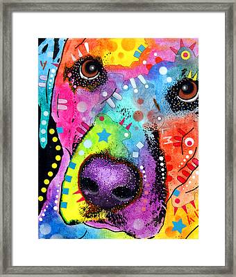Closeup Labrador Framed Print by Dean Russo