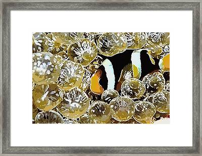 Clown Fish Framed Print by Lanjee Chee