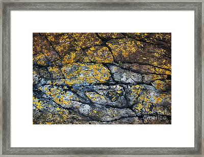 Coastal Colors Framed Print by Tim Gainey