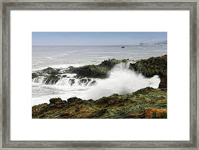 Coastal Expressions Framed Print by Donna Blackhall