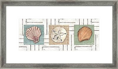 Coastal Shells 1 Framed Print by Debbie DeWitt