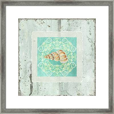 Coastal Trade Winds 4 - Driftwood Precious Wentletop Seashell Framed Print by Audrey Jeanne Roberts
