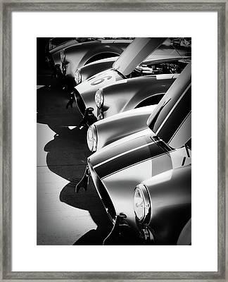Cobra Pit Framed Print by Douglas Pittman