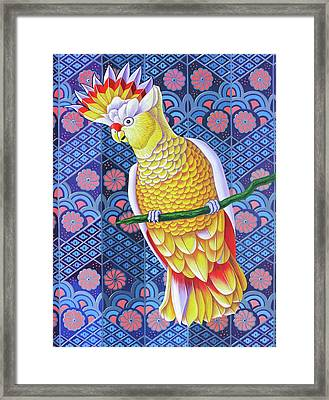 Cockatoo Framed Print by Jane Tattersfield