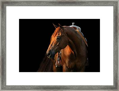 Cocoa Framed Print by Angela Rath