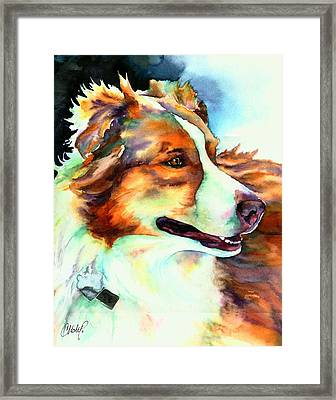 Cocoa Lassie Collie Dog Framed Print by Christy  Freeman