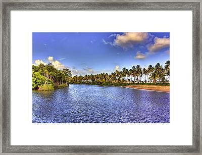 Coconut Island Framed Print by Nadia Sanowar