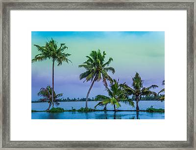 Coconut Trees At  Backwaters Kerala, India  Framed Print by Art Spectrum
