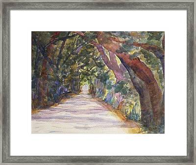 Coffin Point Road Framed Print by Stella Schaefer