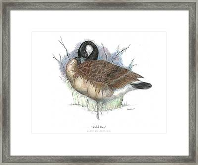 Cold Bay Framed Print by David Weaver