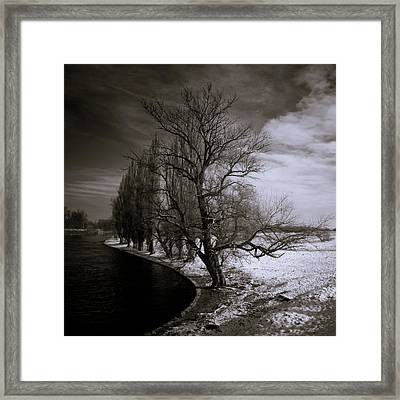 Cold Days Framed Print by Silvijo Selman