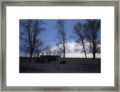 Cold Iowa Evening Framed Print by Jame Hayes