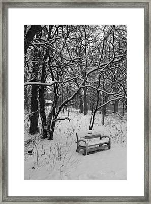 Cold Seat Framed Print by Lauri Novak