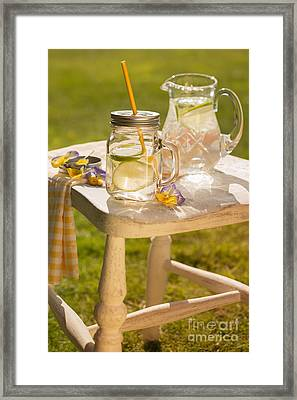 Cold Summer Drinks Framed Print by Amanda And Christopher Elwell