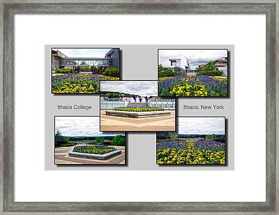Collage Ithaca College Ithaca New York Floral Framed Print by Thomas Woolworth