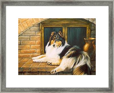 Collie On The Hearth Framed Print by Karen Coombes