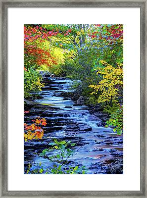 Color Alley Framed Print by Chad Dutson