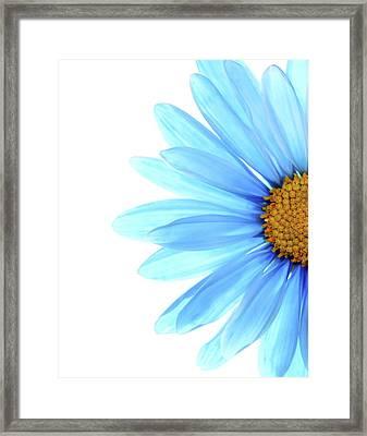 Color Me Blue Framed Print by Rebecca Cozart