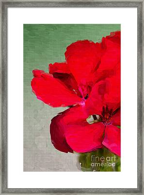 Color Me Red Framed Print by Betty LaRue