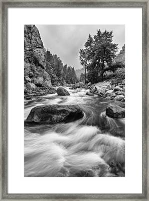 Colorado Black And White Canyon Portrait Framed Print by James BO  Insogna