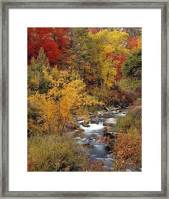 Colorful Canyon Framed Print by Leland D Howard