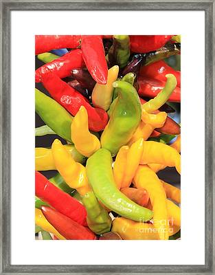 Colorful Chili Peppers  Framed Print by Carol Groenen