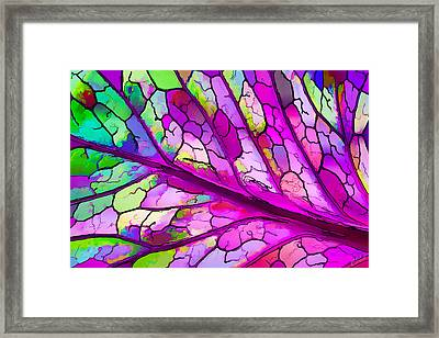 Colorful Coleus Abstract 3 Framed Print by Bill Caldwell -        ABeautifulSky Photography