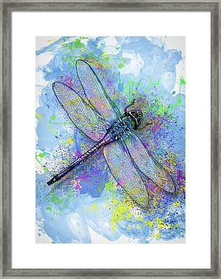 Colorful Dragonfly Framed Print by Jack Zulli