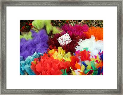 Colorful Easter Feathers Framed Print by Linda Woods