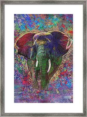 Colorful Elephant Framed Print by Jack Zulli