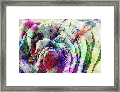 Colorful Floral Framed Print by Jack Zulli