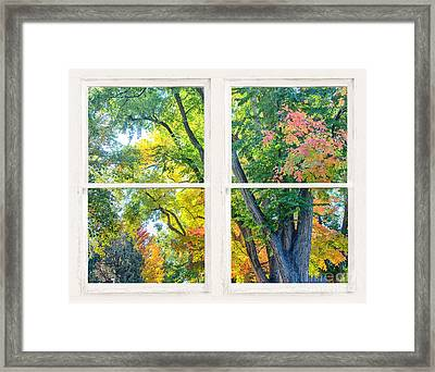 Colorful Forest Rustic Whitewashed Window View Framed Print by James BO  Insogna