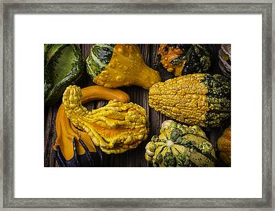 Colorful Gourds Framed Print by Garry Gay