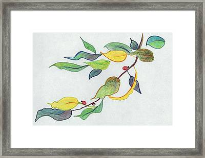 Colorful Leaves Framed Print by Suzanne  Marie Leclair