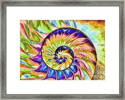 Colorful Nautilus Shell Framed Print by Olga Hamilton