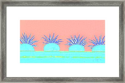 Colorful Potted Plants Mexico Framed Print by Carol Leigh