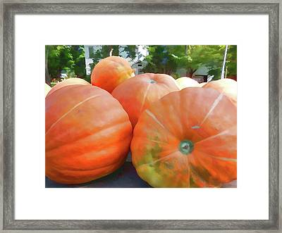 Colorful Pumpkins Framed Print by Lanjee Chee