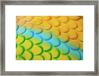 Colorful Scales Framed Print by Adam Romanowicz