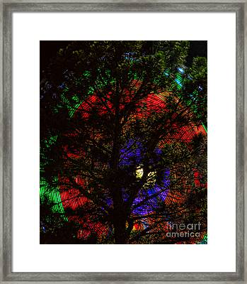 Colorful Tree Framed Print by James BO  Insogna