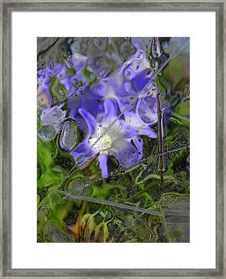Colors Of Nature 6 Framed Print by Sami Tiainen